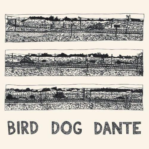 Bird-Dog-Dante.jpg
