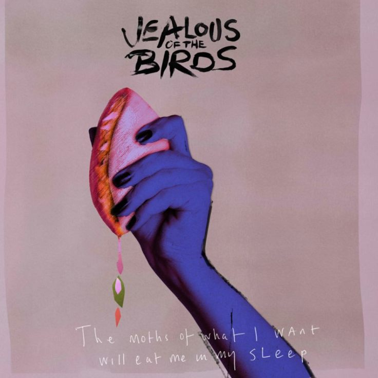 jealous of the birds cover art